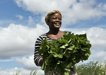 Slow food in Africa